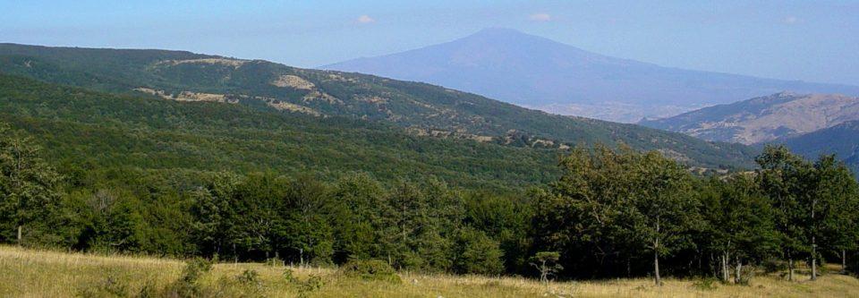 Monte Soro